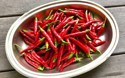 How Cayenne Pepper Could Save Your Life!